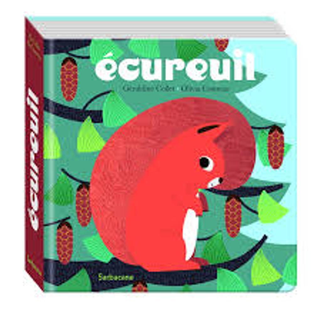 Ecureuil |