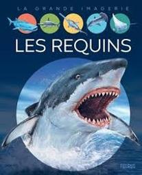 Les requins | Franco, Cathy. Auteur