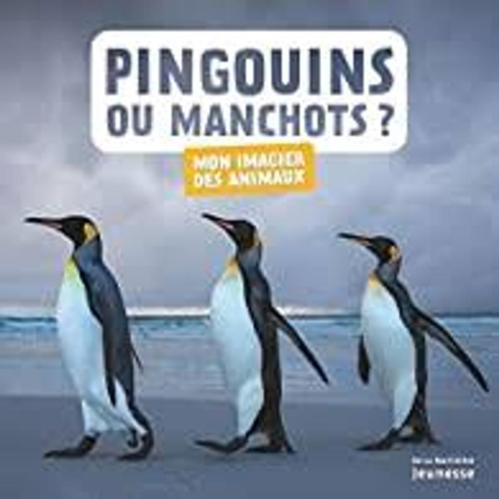Pingouins ou manchots? |