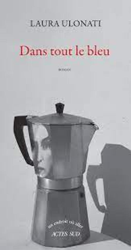 Dans tout le bleu : roman / Laura Ulonati |